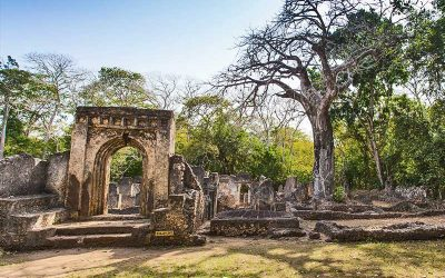 Malindi and Gedi Ruins Tour