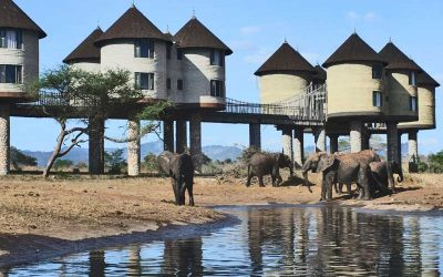 TSAVO EAST & TAITA HILLS WILDLIFE SANCTUARY (SALT LICK) SAFARI – 2 days