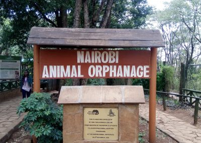 animal orphanage