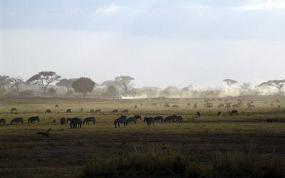 KENYA / TANZANIA FINEST TRAIL – 8 days